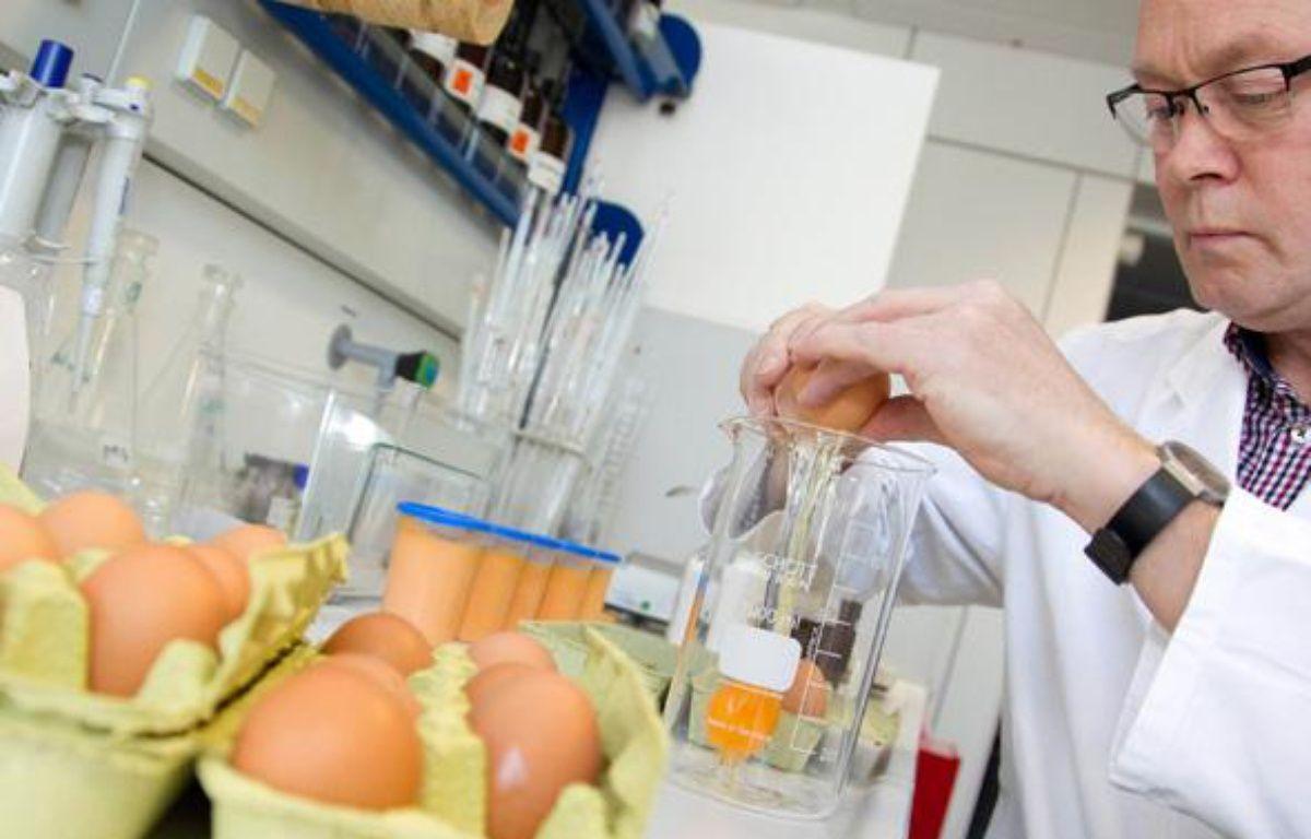 Un technicien examine des oeufs dans un laboratoire à Münster, en Allemagne, le 4 janvier 2011. – AFP PHOTO / FRISO GENTSCH