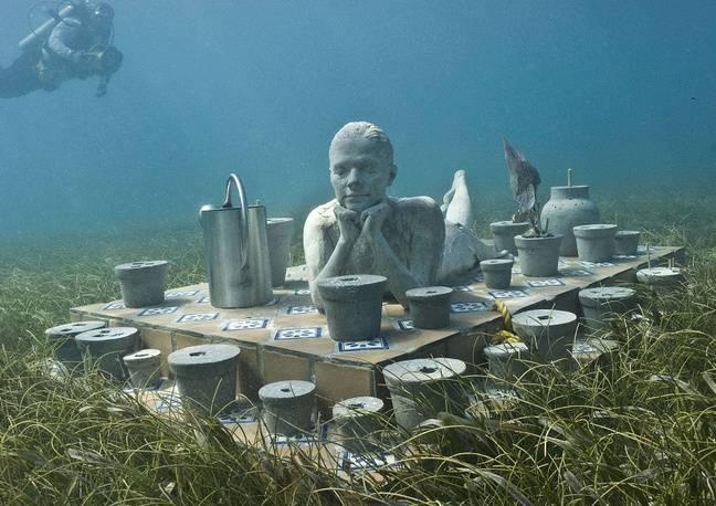 Les plongeurs pourront s'approcher au plus près des sculptures.