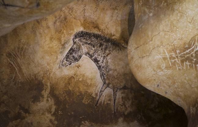 En partie dissimulé par la roche, ce cheval semble jaillir de sa cachette.