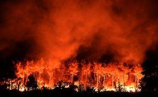 Un incendie aux Pennes-Mirabeau, près de Marseille, le 11 août 2016.