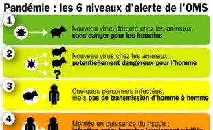 Les six niveaux d'alerte pandémique de l'OMS.