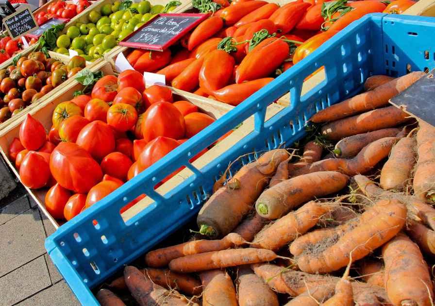 Illustration carottes sur un stand de maraîcher