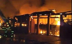 Capture d'écran sur l'incendie qui a ravagé la Cité des Sciences à Naples (Italie) le 4 mars 2013.