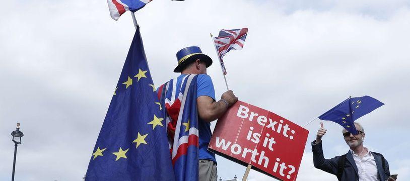 """Un partisan du """"Remain"""" (rester dans l'UE) avec une pancarte """"Le Brexit, est-ce que ça vaut le coup"""" ?"""
