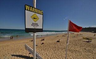Sur une plage australienne, mais ici en Nouvelle-Galles-du-Sud. (illustration)