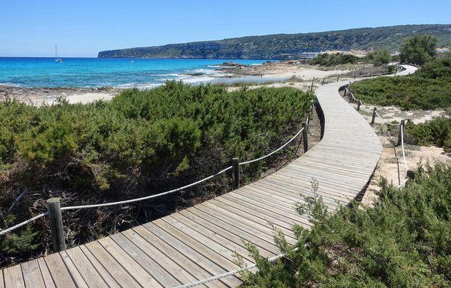 L'impact des visiteurs sur les fragiles systèmes dunaires est notamment limité par un réseau de passerelles.