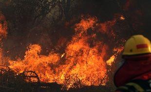 Un incendie de forêt à Robore, dans la région de Santa Cruz en Bolivie le 22 août 2019.
