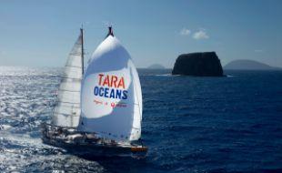 La goélette de la fondation Tara Océan a passé six mois à sillonner les fleuves européens.