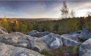 Le classement de la forêt la soumettrait à des réglementations contraignantes.