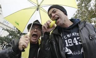 Une partie du groupe Elmer Food Beat, fan du FC-Nantes, le 5 novembre 2013.