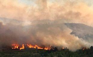 Plus de 500 ha sont partis en fumée dans un incendie près de Carcassonne le 14 août 2019.