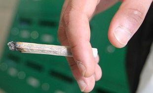 Un petit trafic de cannabis décelé (Illustration).