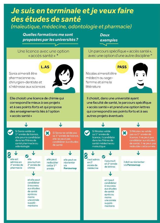 Infographie du ministère de l'Enseignement supérieur résumant les choix des bacheliers qui souhaitent faire des études de santé.