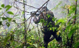 Un légionnaire du 3e régiment étranger d'infanterie s'entraîne dans un centre de l'armée de Terre à Régina en Guyane, le 15 avril 2015