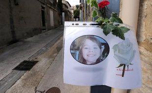 """La réclusion criminelle à perpétuité assortie d'une peine de sûreté de 30 ans a été requise mardi devant les assises du Gard à l'encontre de Nicolas Blondiau """"pour le prix de l'innocence volée et violée d'Océane"""", 8 ans, en novembre 2011."""
