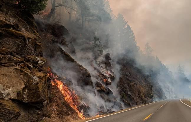Le Camp fire, près de Paradise, en Californie.