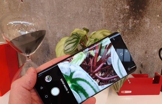 La fonction macro à 2,5 cm du Huawei P30 est toujours aussi impressionnante.