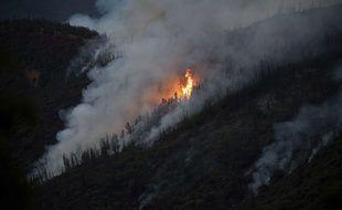 Le feu a démarré dans le comté de Mariposa, vendredi 13 juillet.