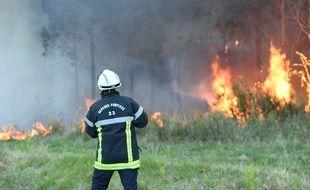 1000 hectares de forêt ont déjà été détruits.