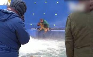 Un chien va être jeté de force dans une rivière artificielle pour les besoins d'un film.