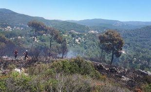 Trois hectares de pinède ont été détruits par l'incendie.
