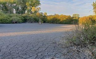 La sécheresse, visible sur le site des marais de Fretin (illustration).