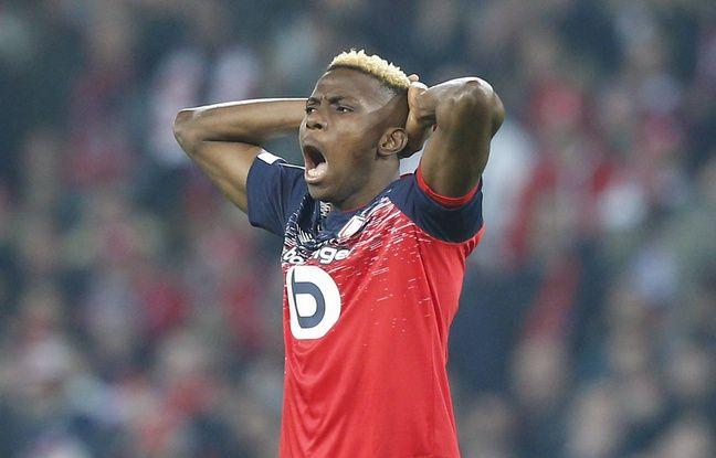 Losc: Victor Osimhen désigné meilleur joueur africain de Ligue 1