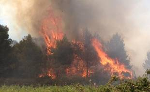 Le département de l'Hérault fait l'objet de nombreux départs de feu depuis le début de l'été, comme ici à Montagnac, le 13 juin.
