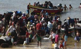 Des pêcheurs débarquent leur cargaison d'algue rouge sur la plage d'El Jadida, au Maroc, le 20 août 2014