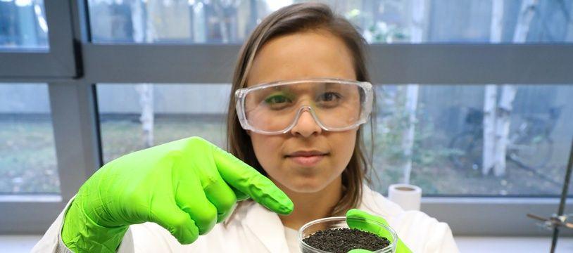 L'alginate, extraite d'algues brunes, utilisée par Camila Stefanne Dia Costa pour dépolluer des eaux d'effluents industriels.