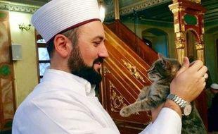 Un imam turc a ouvert les portes de sa mosquée aux chats.