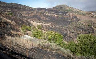 Plus de 10.000 hectares ont été ravagés par cet incendie qui s'est déclaré le 17 août dans le centre montagneux de Grande Canarie, l'île située au large du Maroc.