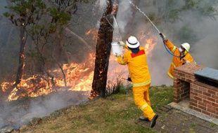 Des pompiers australiens tentent de protéger une maison contre un incendie, le 22 octobre 2013 dans les Montagnes Bleues, près de Sydney