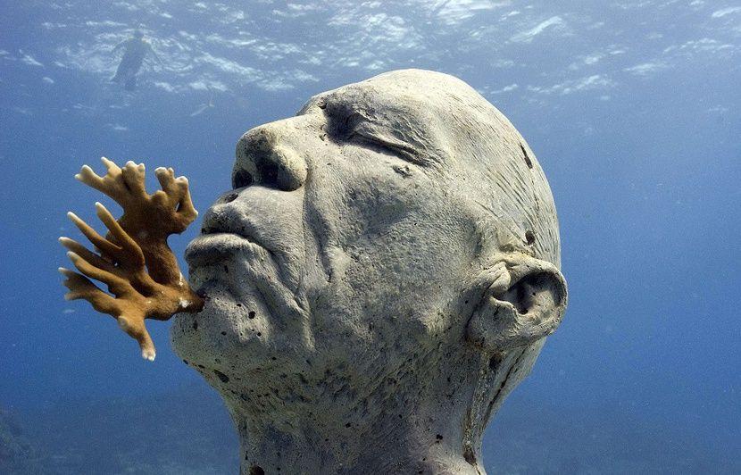 VIDEO. Cannes : Après un faux départ, feu vert pour le « premier musée sous-marin de France »