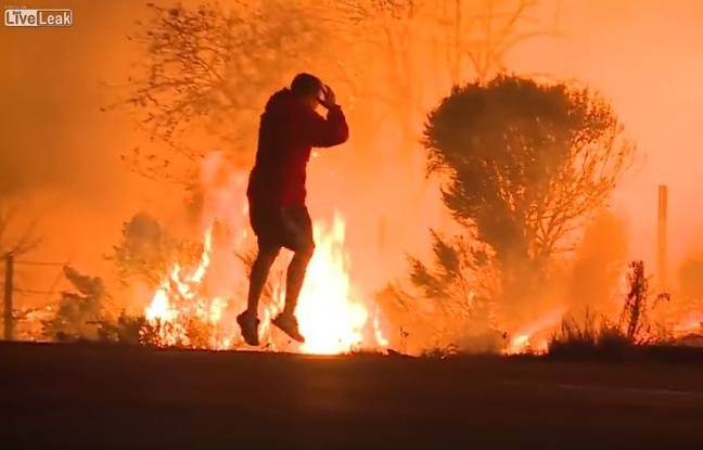 nouvel ordre mondial   VIDEO. Etats-Unis: Il sauve un lapin des violents incendies en Californie