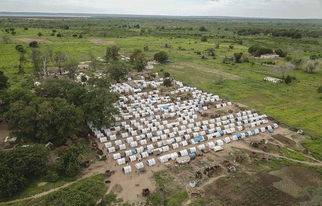 648x415 camp refugies province cabo delgado theatre multiples attaques groupes djihadistes