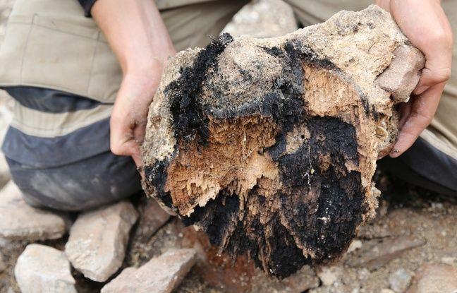 Un morceau de bois retrouvé dans le sanctuaire de la Tournerie.