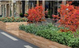 La ville de Lyon va créer une trame verte traversant le centre-ville.