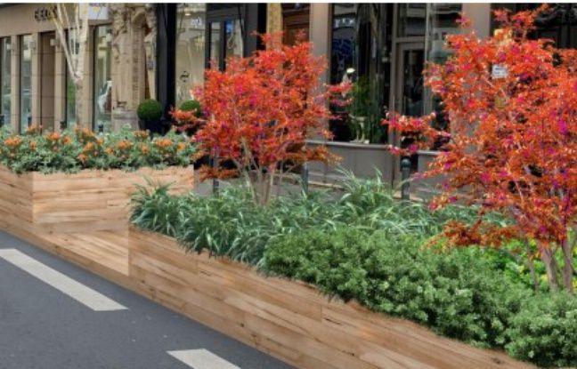 Lyon : Une trame verte entre Bellecour et Terreaux, les travaux commenceront lundi