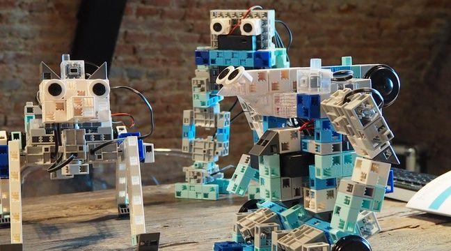 lille des robots pour apprendre le codage informatique aux enfants. Black Bedroom Furniture Sets. Home Design Ideas