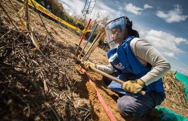 La Colombie est le deuxième pays le plus contaminé après l'Afghanistan.
