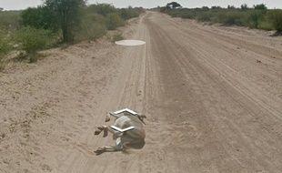 Capture d'écran de la photo d'un âne sur une route du Mozambique, sur Google Street View.
