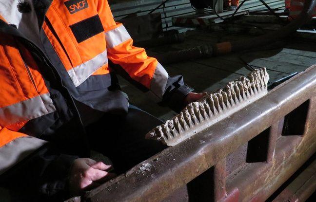 Une plaque de calcite retrouvée dans un des collecteurs de drainage, à la gare Lille Europe.