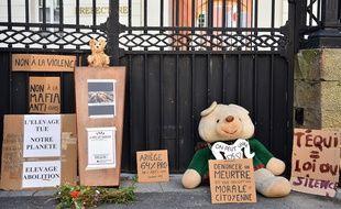 Le 20 juin 2020 à Foix, une manifestation favorable à l'ours a réuni plusieurs dizaines de personnes, venues dénoncer la mort d'un jeune mâle tué par balles, dont le cadavre avait été retrouvé le 9 juin.