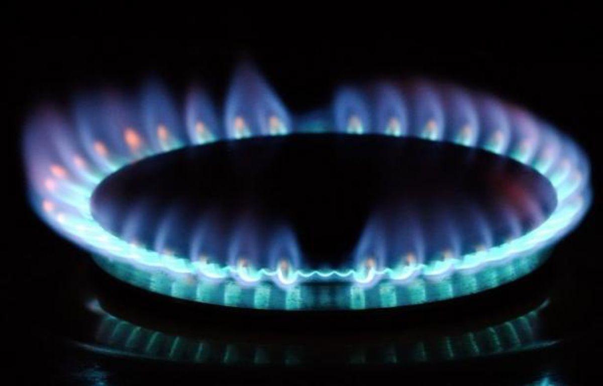 Le gouvernement n'accordera pas à GDF Suez la hausse de 7% des tarifs du gaz qu'il demande, et veut réformer leurs règles d'évolution, actuellement adossées aux cours du pétrole et qui conduisent le groupe gazier à réclamer des augmentations trimestrielles importantes. – Philippe Huguen afp.com