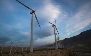 C'est un énorme parc éolien au Brésil, porté par le groupe français Voltalia et deux partenaires locaux, Chesf et Encalso Damha : le complexe VamCruz a été inauguré cette semaine. Ici des éoliennes aux Etats-Unis