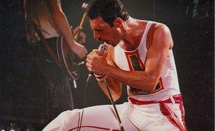 Le chanteur Freddie Mercury au New Haven Coliseum en 1980