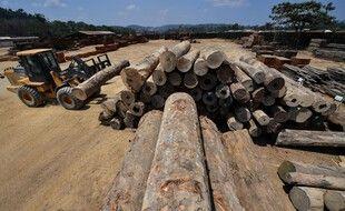 Du bois amazonien destiné à la vente, au Brésil.