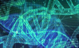 Des segments ADN, illustration