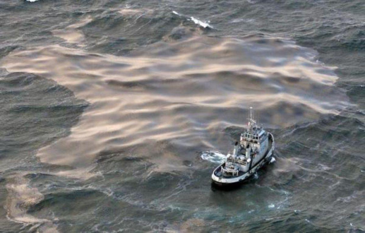 La Cour de cassation dira mardi en début d'après-midi si elle valide ou annule les condamnations, dont celle de Total, prononcées pour la marée noire déclenchée par le naufrage du cargo pétrolier Erika il y a presque 13 ans au large de la Bretagne. – Valery Hache afp.com